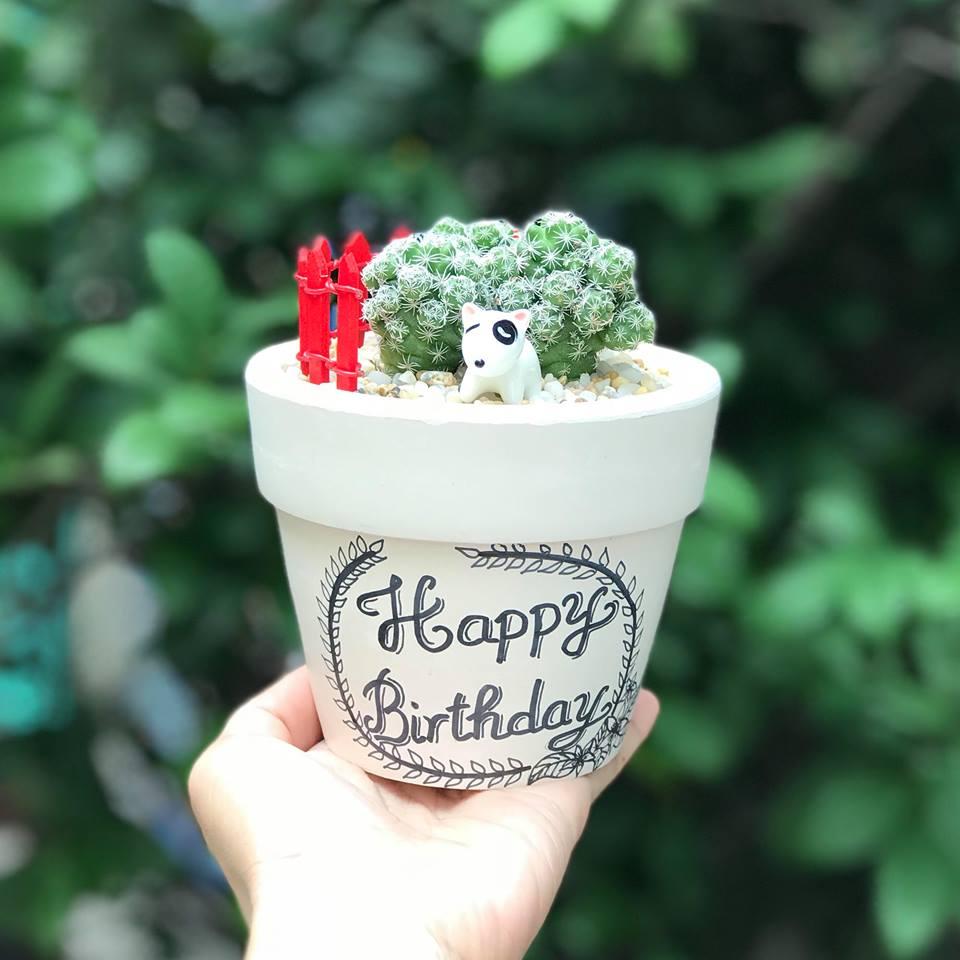 Chậu vẽ Happy birthday xương rồng trứng chim
