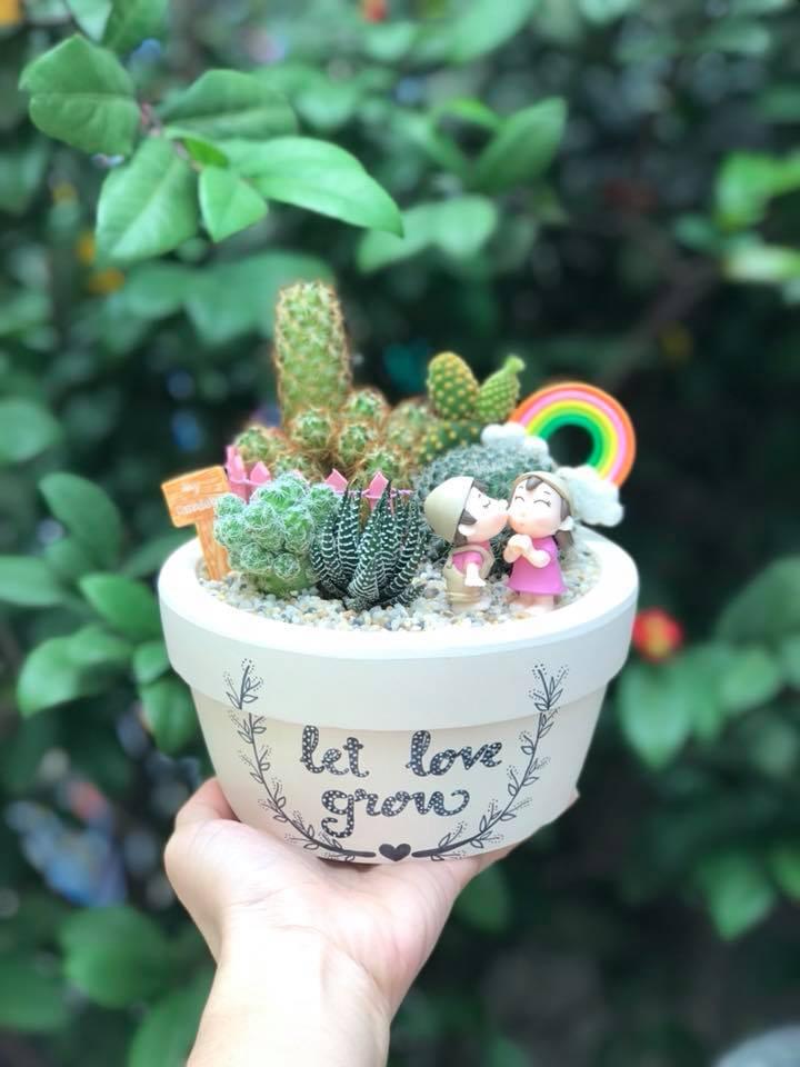 Tiểu cảnh xương rồng chậu vẽ Let Love Grow