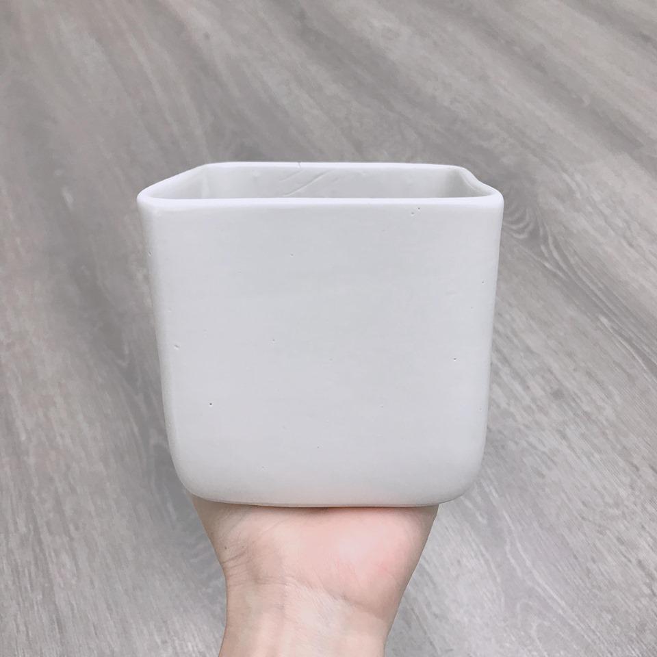 Chậu vuông bầu trắng 10*10cm